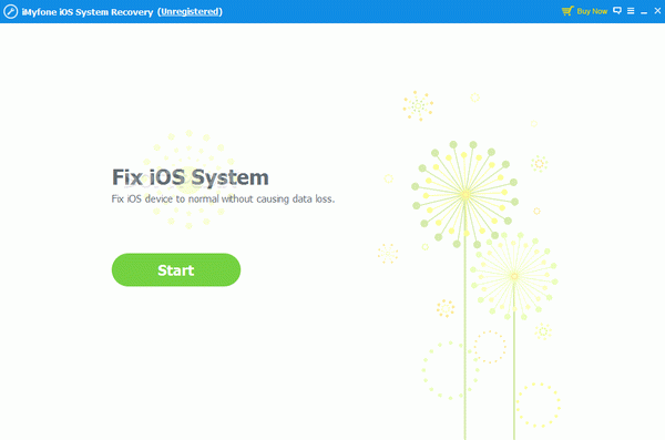 iMyFone iOS System Recovery